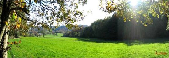 Last minute Hotels in de Ardennen
