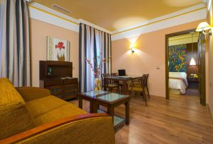 Hotel Suites Gran Via 44 in Granada