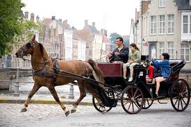 horse carriage bruges